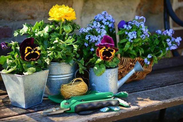 prezent dla ogrodnika